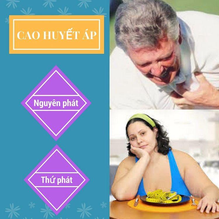 Bệnh cao huyết áp hiện nay được chia làm 2 nhóm chính