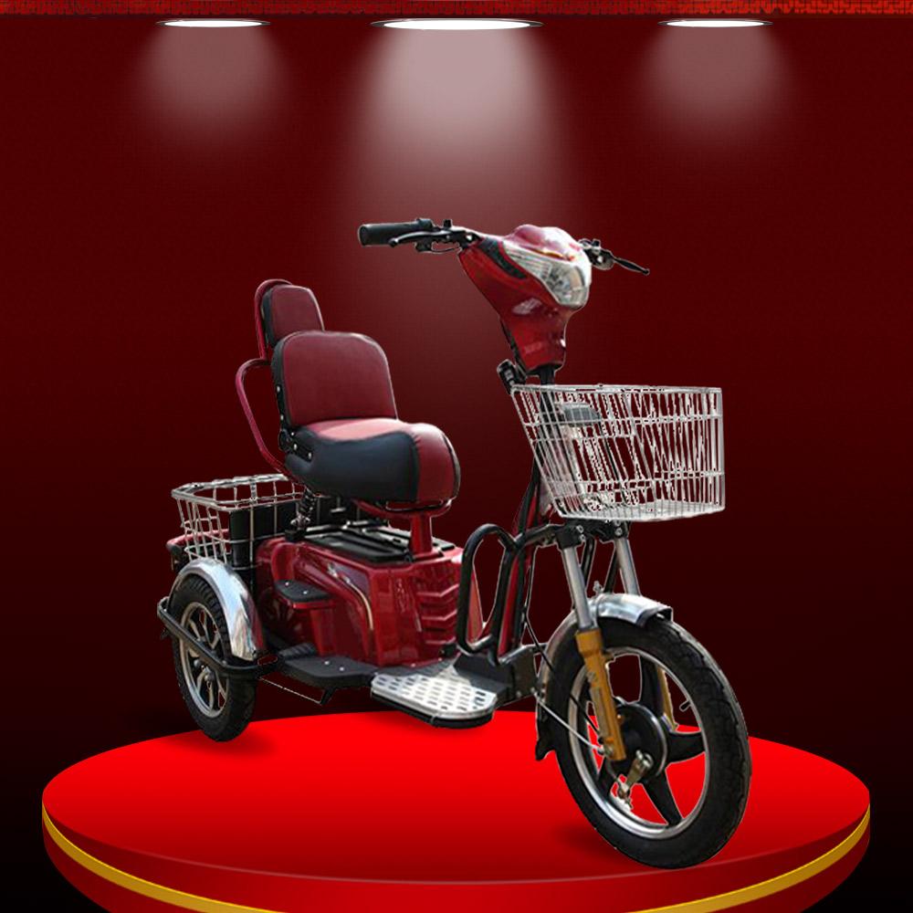 Xe máy điện 3 bánh hiện đại màu đỏ TM025