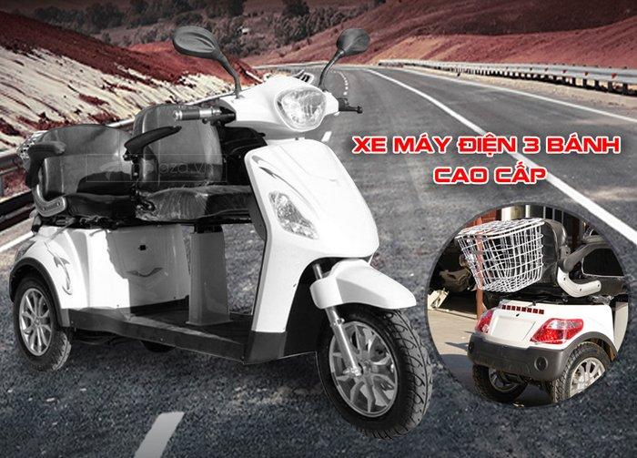 Xe máy điện 3 bánh cao cấp cho người già TM024 1