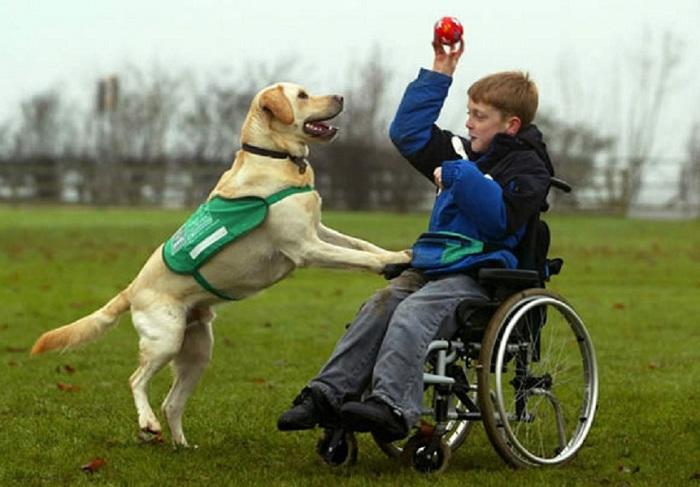 Quà tết cho người khuyết tật giúp họ sống tốt hơn