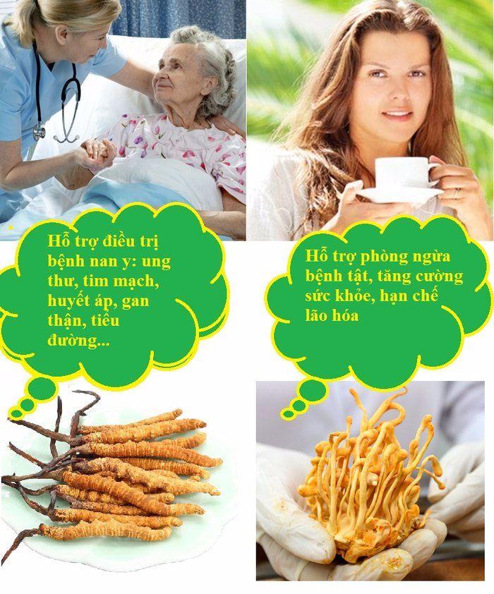Tùy từng tình trạng sức khỏe mà lựa chọn loại đông trùng hạ thảo khác nhau